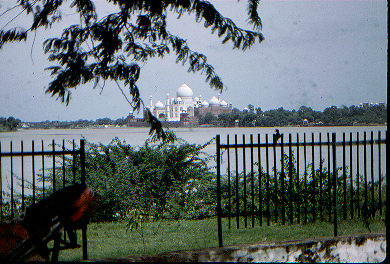 Taj across the river