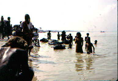 People and bufallos bathing in the Ganges