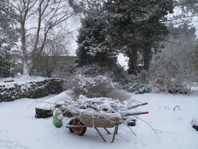 Wheel barrow left out in the snow