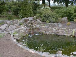 Finished-main-pond