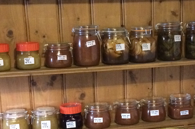 Shelves of jam and other preserves