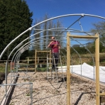 Constructing our poly tunnel has kept us busy